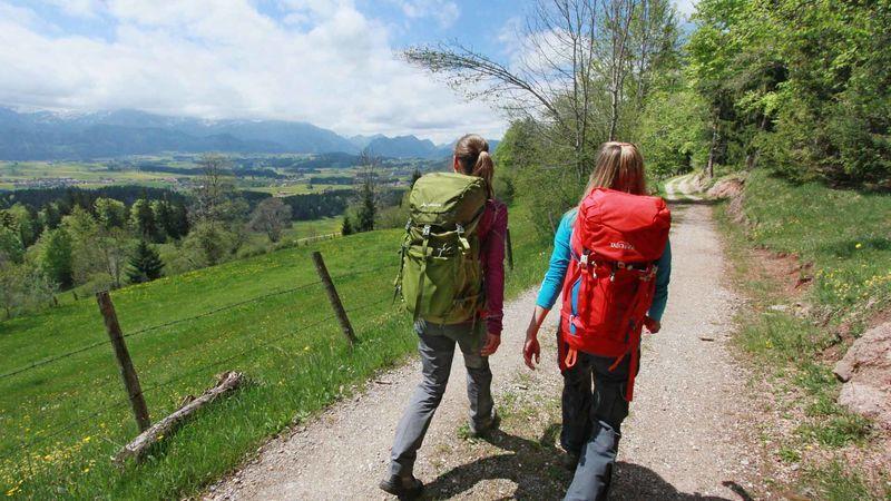 wandern-loewenzahnwandern-outdoor-hintergrund